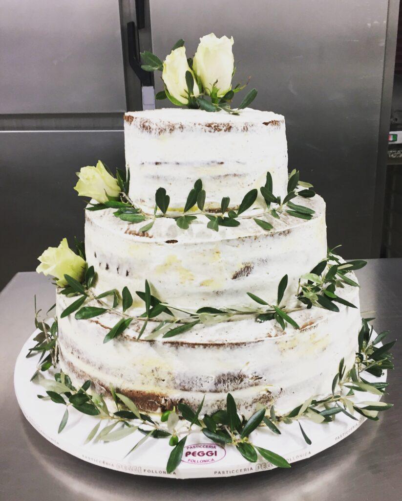 rustic wedding cake con ulivo